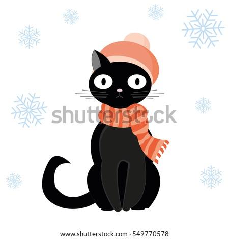 black cat in woolen hat with