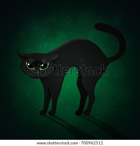 black cat on green background