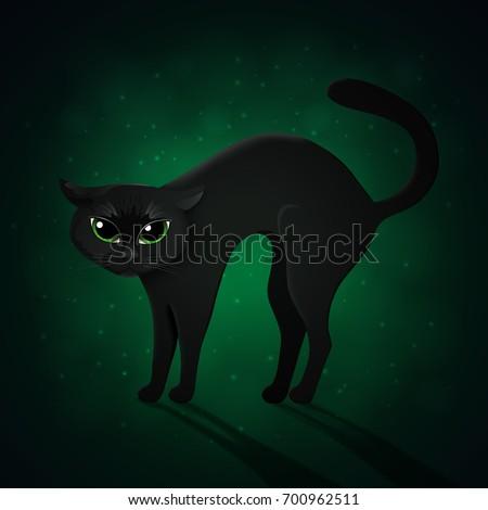 black cat on green background