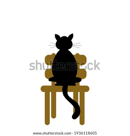 black cat on the wooden chair