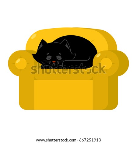 black cat on yellow armchair