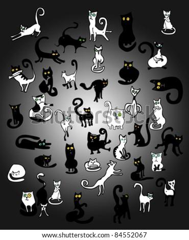 Black Cats, White Cats