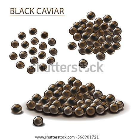 black caviar russian thorn