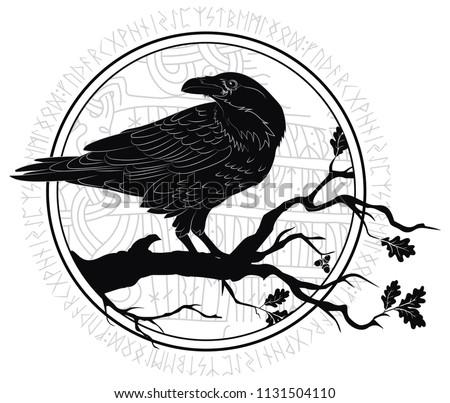 black crow sitting on a branch