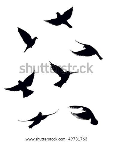 Black doves on a white background