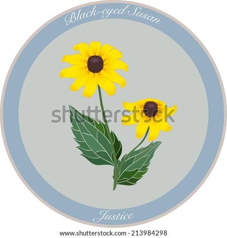 black eyed susan flower meaning