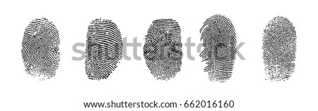 black fingerprints  vector