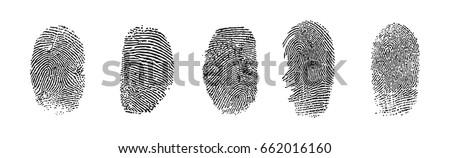 black fingerprints  vector
