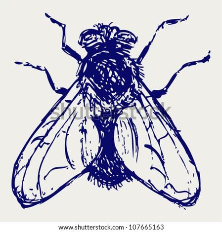 Black flies. Sketch