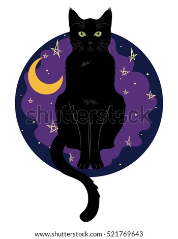 black green eyed cat sitting on