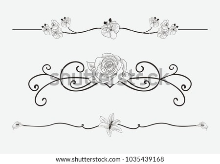 Black Hand Drawn Delicate Floristic Dividers, Line Borders with Branches, Plants, Flowers, Swirls and Scrolls. Decorative Outlined Vector Illustration. Floral Text Dividers #1035439168