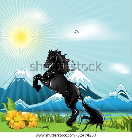 black horse - stock vector
