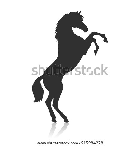 black horse with hind legs