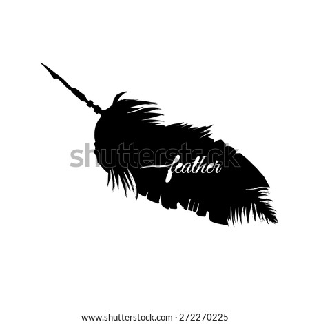 black isolated feather