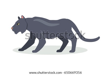 Black jaguar cartoon character. Cute black jaguar flat vector isolated on white. South America fauna. Panthera icon. Wild animal illustration for zoo ad, nature concept, children book illustrating