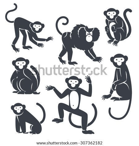 Black Monkeys Silhouettes Isolated on White. Vector illustration. Symbols of 2016 Chinese New Year.