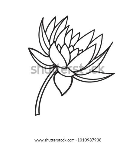 Black outline lotus flower vector drawing ez canvas black outline lotus flower vector drawing mightylinksfo