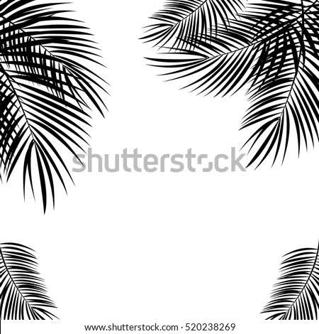 Black Palm Leaf on White Background. Vector Illustration. EPS10