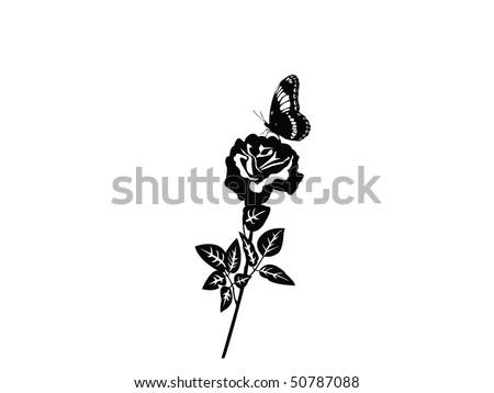 wallpaper black rose. lack wallpaperutterfly