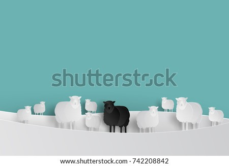 black sheep in white sheep