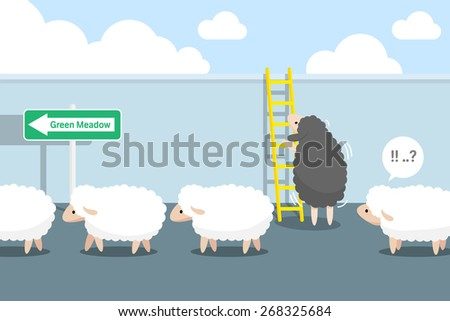 black sheep to climb the stairs