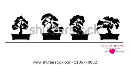 black silhouette of bonsai
