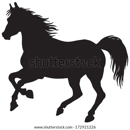 black silhouette of horse