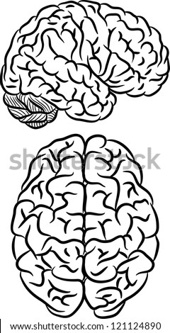 Black silhouette of human brain on white background