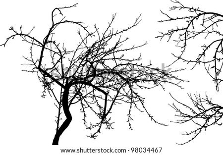 Black silhouette of naked tree and two branches isolated on white background