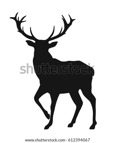 Stock Photo Black silhouette of the buck on the white background, simple vector illustration