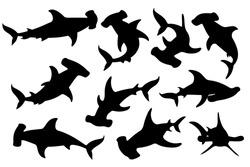 Black silhouette set of hammerhead shark underwater giant animal simple cartoon character design flat vector illustration isolated on white background
