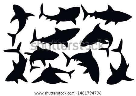 Black silhouette set of shark with mouth closed in different poses Shark with mouth closed giant apex predator cartoon animal design flat vector illustration isolated on white background