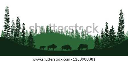 Black silhouettes of american bison. Natural panorama of forest animals. Isolated landscape. Wildlife scene. Vector illustration