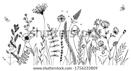 Black silhouettes of grass, flowers and herbs isolated on white background. Hand drawn sketch flowers and insects. Сток-фото ©