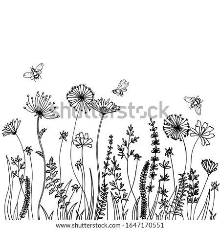 Black silhouettes of grass, spikes and herbs isolated on white background. Hand drawn sketch flowers and bees.