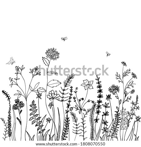 Black silhouettes of grass, spikes, herbs and insekt isolated on white background. Hand drawn sketch flowers. Can be used for printing on summer textiles and phone case.