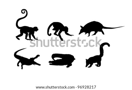 black silhouettes of monkey