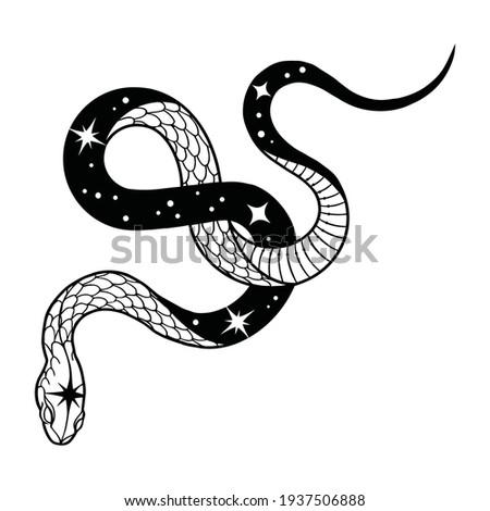 Black Snake vector illustration for tattoo design.