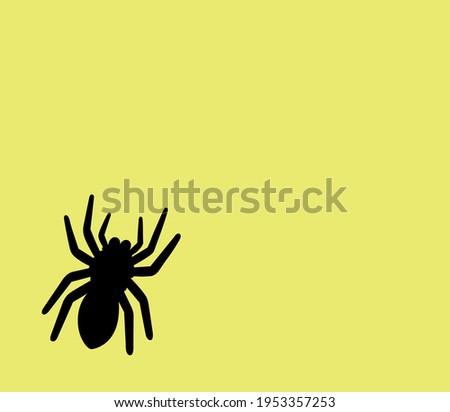 black spider on yellow