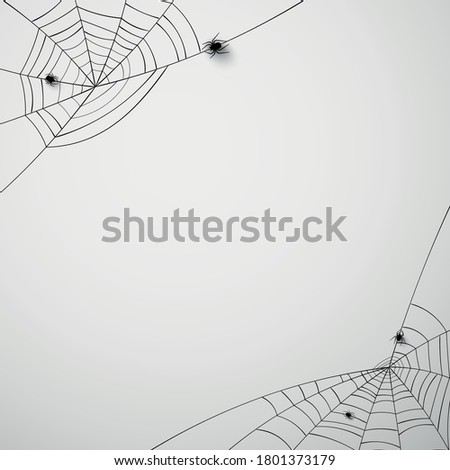 Black spiderwebs with 3d crawling spiders. White background. Space for text. Vector illustration.