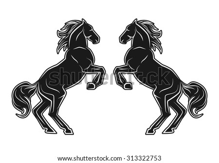 black standing horse couple