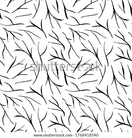 black tree branches vector