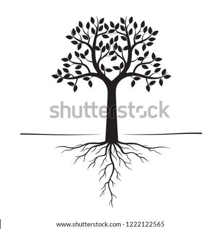 Black Trees and Roots. Vector Illustration. Plant and Garden.