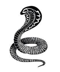 Black vector decorative snake tattoo or illustration isolated on white background