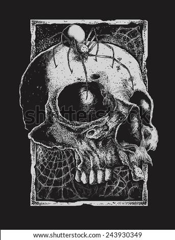 black widow and skull