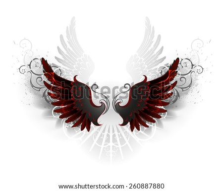 black wings   decorated with a