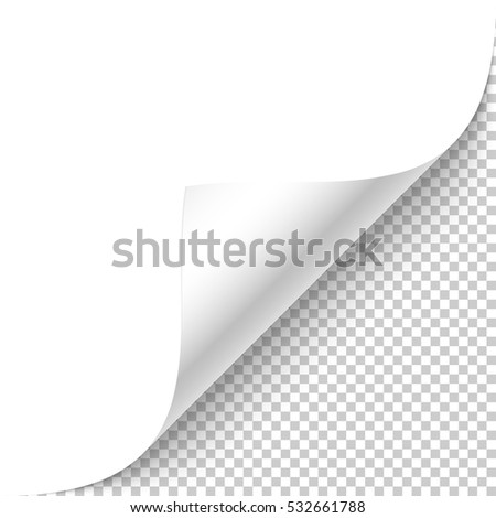 Blank white page curled corner with shadow on transparent background realistic vector illustration.