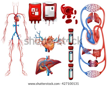 Blood types and breathing system illustration