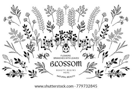 Bloom collection. Set of hand-drawn flowers, branches and leaves. Nice to combine among themselves and to create your own unique design. #779732845