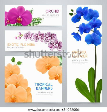 blooming orchid plants 4